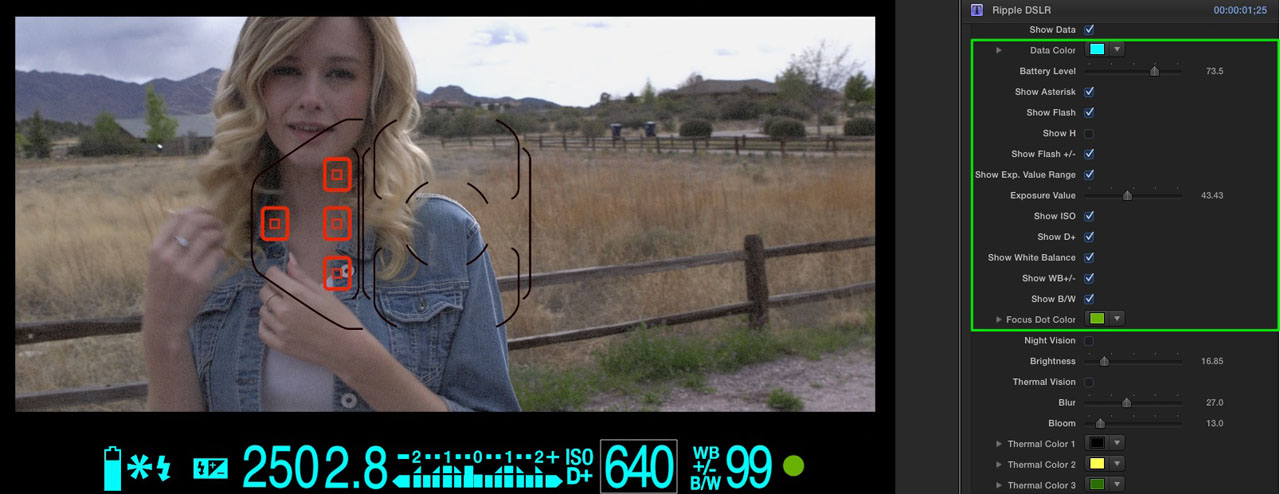 rt-dslr-how-to-04[1]